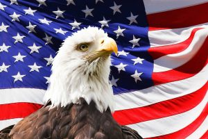 eagle head in front of USA flag
